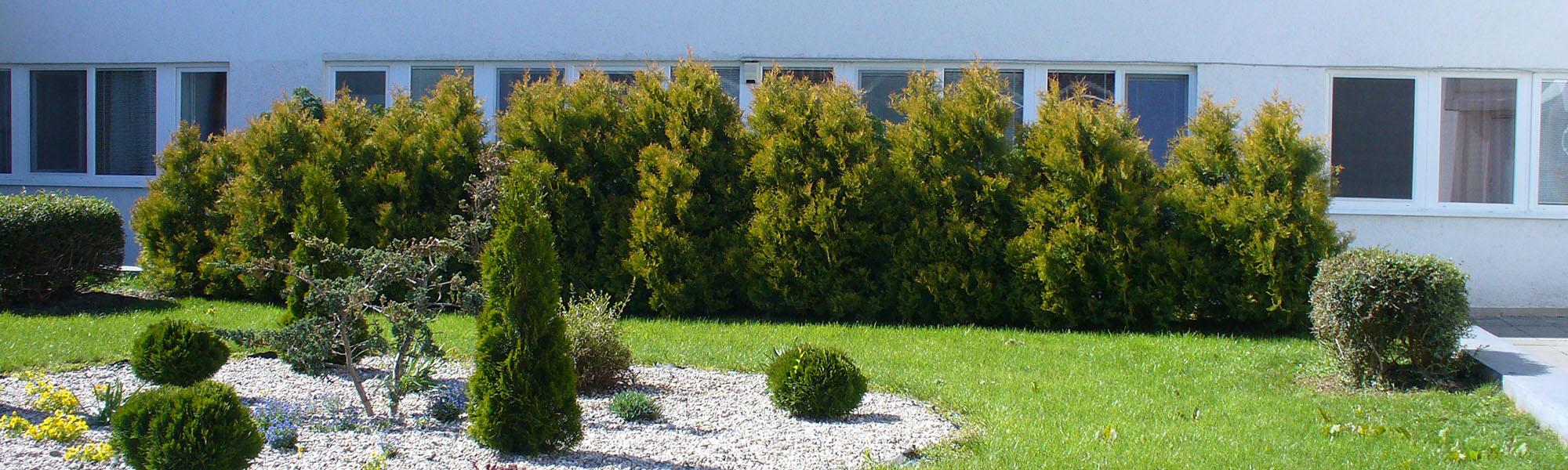 Domov sociálnych služieb pre dospelých Lehnice - Okrasná záhrada