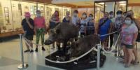 V Múzeu Tatranského národného parku
