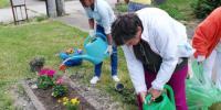 Sadenie kvetov